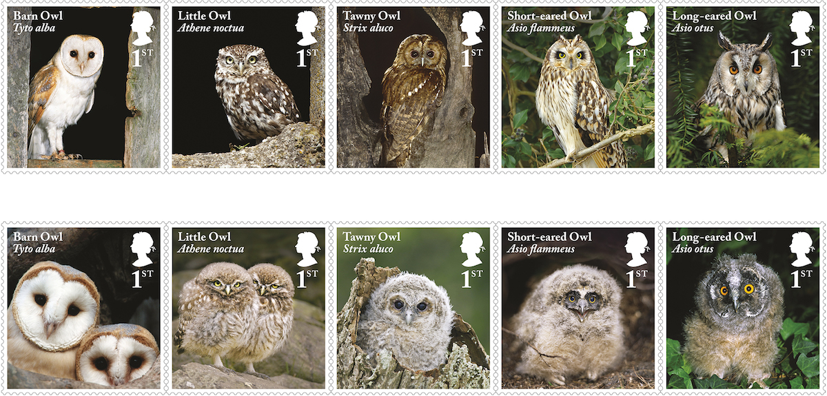 British Owls New Stamps 11 May 2018 Norvic Philatelics